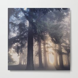Foggy Morning in the PNW Metal Print