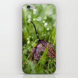 there iPhone Skin