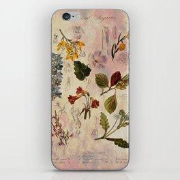 Botanical Study #1 iPhone Skin