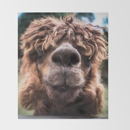 Curious Llama Throw Blanket