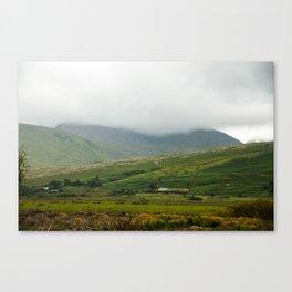 Connemara 1 Canvas Print