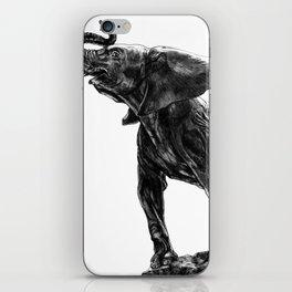 Elephant Statue iPhone Skin