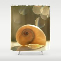 seashell Shower Curtains featuring Seashell... by Nature In Art...