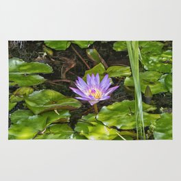 Exquisite water lily Rug