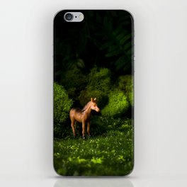 A Small Brown Horse in the Valley iPhone Skin