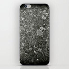 Egg Mystery iPhone Skin