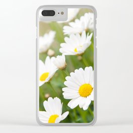 White chamomiles herb flowering plant Clear iPhone Case