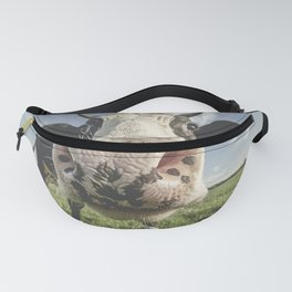 Inquisitive Cow Fanny Pack