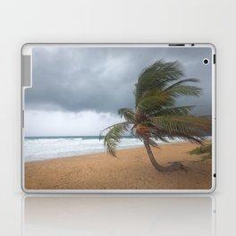 Windswept Palm tree Laptop & iPad Skin