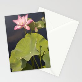 Pink Lotus by Teresa Thompson Stationery Cards