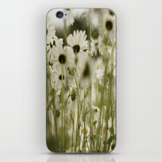 white daisies :) iPhone & iPod Skin