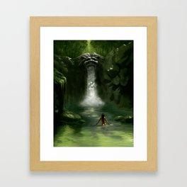 Lion Falls Framed Art Print