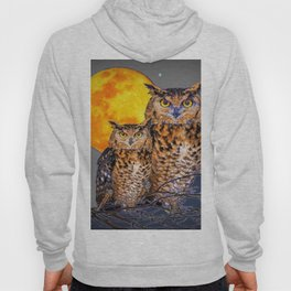 TWO OWLS IN FULL MOONSCAPE GREY NIGHT Hoody