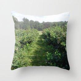 Garden Path Throw Pillow