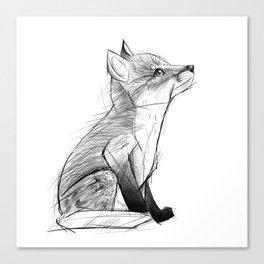Fox Pup Canvas Print