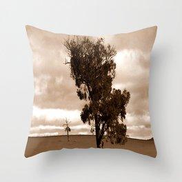 Our barren Land Throw Pillow