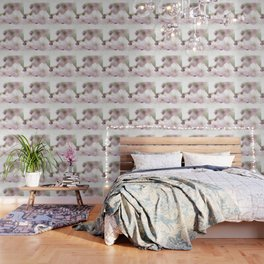 Delicate and fliligrane flowering of the almond tree Wallpaper