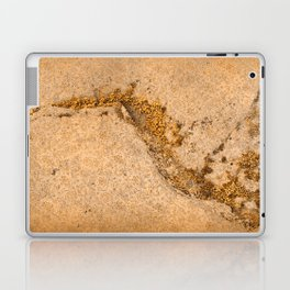 Vintage Moss Flourishes Laptop & iPad Skin