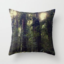 Sunrays in the Redwoods Throw Pillow