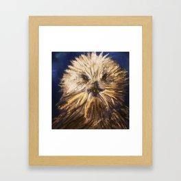 Jonah's Friend The Sea Otter  Framed Art Print