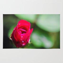 Tiny Rose Rug