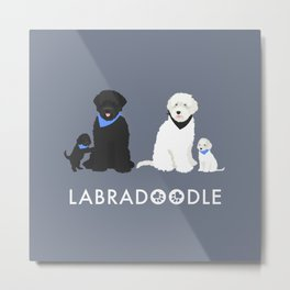 Labradoodle black and white Metal Print