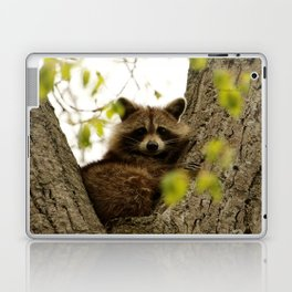 Happy in her hideout Laptop & iPad Skin