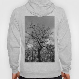 Witchy black and white tree Hoody