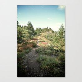 Cliff Trail Canvas Print
