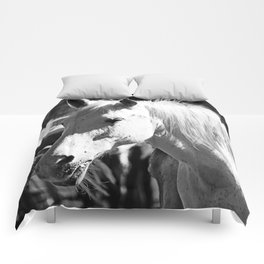 White Horse-B&W Comforters