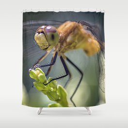 Dragonfly Closeup Shower Curtain