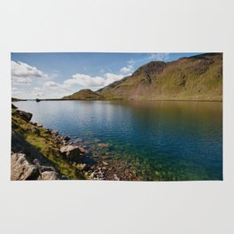 Levers Water Rug