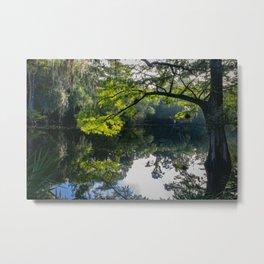 Florida river Metal Print