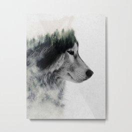 Wolf Stare Metal Print