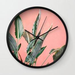 Palm on pink | Botanical photography print | Spain travel photo art Wall Clock