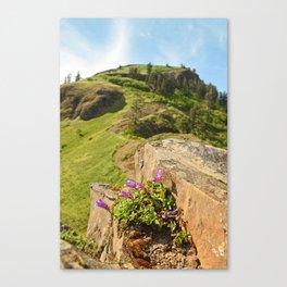 Saddle Mountain Oregon Coast Nature Northwest Forest Landscape Hiking Canvas Print