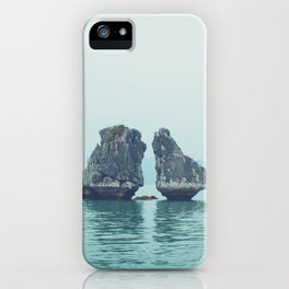 Roosters iPhone Case