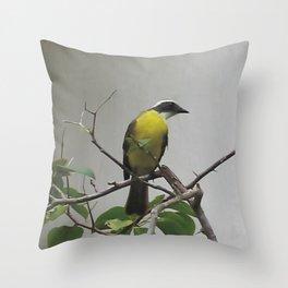 Chichen Itza Bird Throw Pillow
