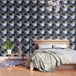 CAT INVASION Wallpaper