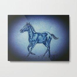 Blue Foal Metal Print