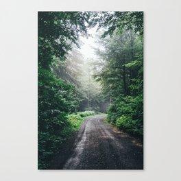 Dark Forest Path Canvas Print