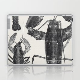 Vintage Lobster Photograph (1911) Laptop & iPad Skin