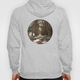 Tunnel of Trees Photography Print Hoody