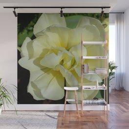 Double Cream Tulip by Teresa Thompson Wall Mural