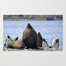 Fur Seal Resting Rug