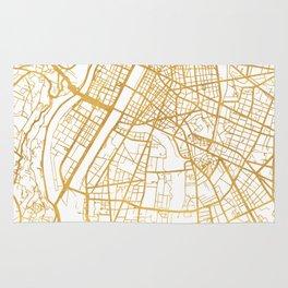 LYON FRANCE CITY STREET MAP ART Rug