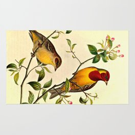 Red-Headed Bunting Rug