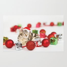 A Cute Cat Christmas Gift Box Ornaments Red Santa Hat Rug