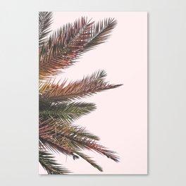 Palm Life Canvas Print