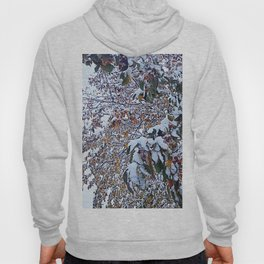 Snow on Fall Leaves 2 Hoody